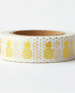 PineappleWashi-03